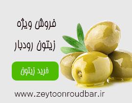 فروش زیتون اصل رودبار